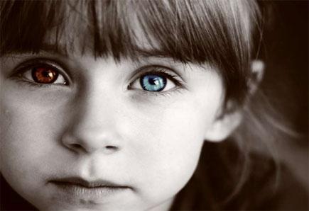 jane elliot blue eye brown eye Jane elliott decided to make the exercise based elliott would not allow brown-eyed and blue-eyed children to the blue-eyed, brown-eyed exercise by.